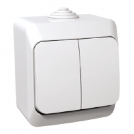 WDE000551 Cedar Plus - 1pole 2-circuits switch - 16AX, locator light, white